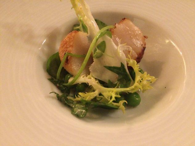 Amuse Bouche: Jakobsmuschel auf Salat