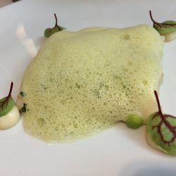 Sellerie | Erbse | Buttermilch