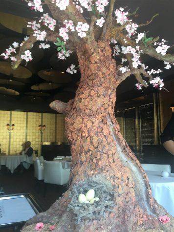 Der Petits Fours Baum aus Schokolade