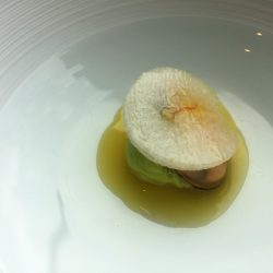 Holländische Muschel mit Zitronengrasjus und Dill-Kalamansi-Crème