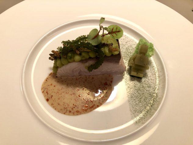 Hiramasa / Grüne Tomate / plankton / Seetrauben